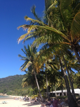 Whitsundays (17)