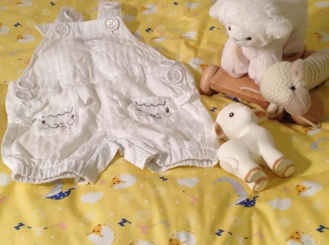 nursery_sheep
